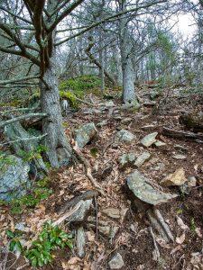 Rock Knob Ascent