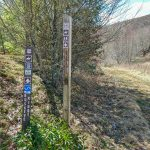 Buckey Ridge and Max Patch Loop Trails