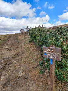 Max Patch Summit Trail