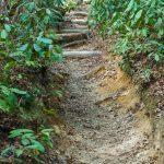 Heavily Eroded Cat Gap Loop Trail