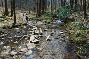 Horse Cove Creek Crossing