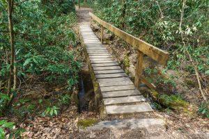 Log Footbridge on the Cat Gap Loop Trail