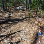 John Rock Trail From Cat Gap Loop