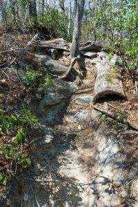 Steep Rocky Trail