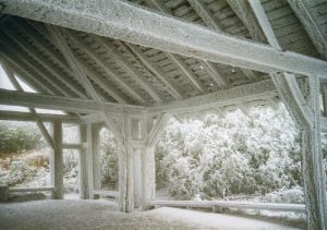 Rime Ice on the Craggy Gardens Shelter