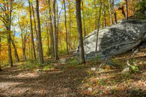 Boulder and Fall Color on the Rumbling Bald Loop Trail