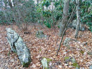 Summit Rocks on Stomping Knob
