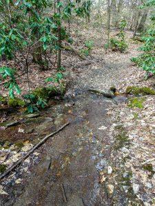 Stream Crossing on the Club Gap Trail