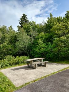 Picnic Table Overlook