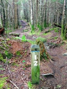 Post 12 on the Richland Balsam Trail