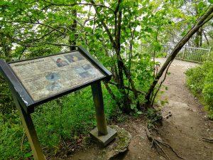 Observation Platform on the Whiteside Montain Trail