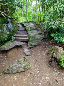 Trail Through Rock Cranny