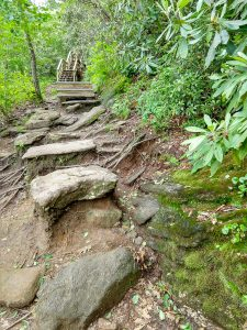 Approaching Stair Structure on the Whiteside Mountain Trail
