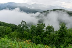 View of the Black Mountains From Big Laurel Gap Overlook