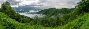 View From Big Laurel Gap Overlook