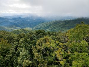View Southwest from the Cowee Bald Fire Tower