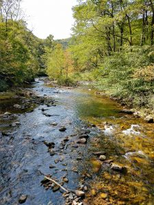 View of the South Toe River from the Black Mountain Campground Bridge