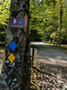Mt. Mitchell Trail Sign
