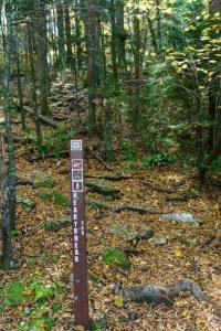 Heartbreak Ridge Trail Junction