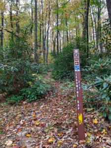 Lead Mine Gap Trail Sign