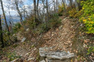 Approaching the Summit of Bald Knob
