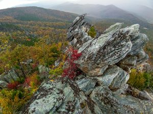 View from the Prominent Outcrop on Bald Knob