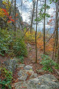 Trail Below Cliffs on Bald Knob