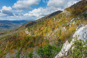 Bald Knob Ascent View Fall Color