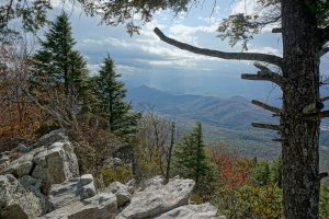 Southwest View from Bald Knob