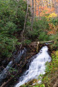 Upper Cascade on Toms Creek