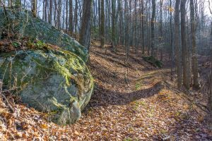 Boulders Beside the Bluff Mountain Loop Trail