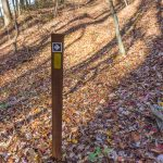 Directional Sign on the Bluff Mountain Loop Trail