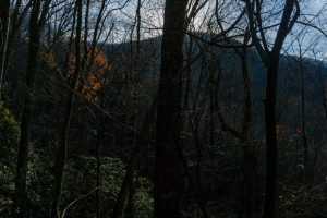 Ridge Looming Above Bluff Mountain Loop Trail