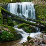 Small Cascade on the Bluff Mountain Loop Trail