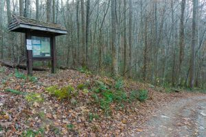 Trailhead for Bluff Mountain and Betty Place Trails