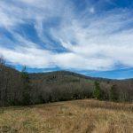 Wildlife Meadow #3 on FS 482B