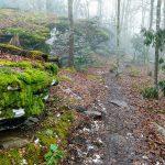 Moss Covered Rocks on Bearwallow Mountain
