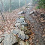 Rock Border on the Wildcat Rock Trail