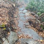Rock Paving on the Wildcat Rock Trail