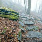 Rock Steps on the Wildcat Rock Trail