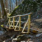 Log Bridge on Devils Den Nature Trail