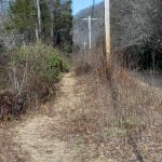 River Loop Trail By The Road