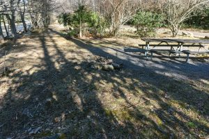 River Loop Trail Picnic Tables