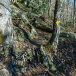Rocky Section of River Loop Trail