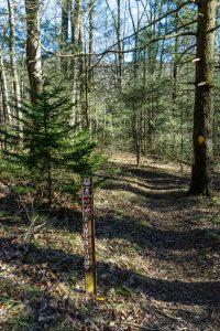 River Loop Trail Sign