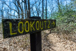 Lookout 2 Sign