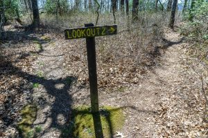 Spur Trail to Lookout 2 on Chinquapin Mountain