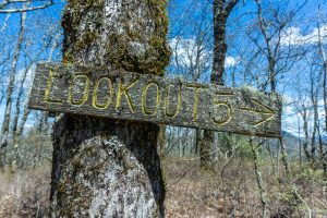 Lookout 5 on Chinquapin Mountain