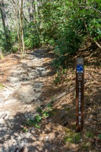 Sign for the Chinquapin Mountain Trail