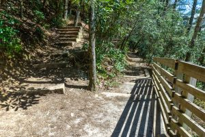 Trail Structures at Glen Falls